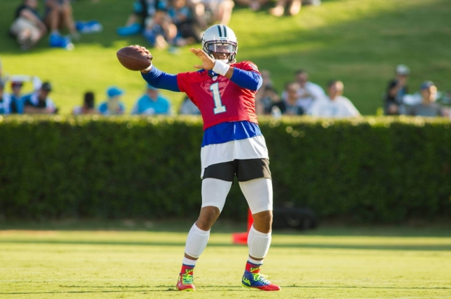 NFL: Carolina Panthers-Training Camp